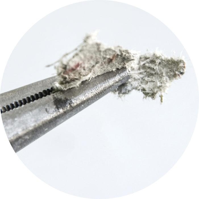 Kuitunäyte saattaa sisältää asbestia.