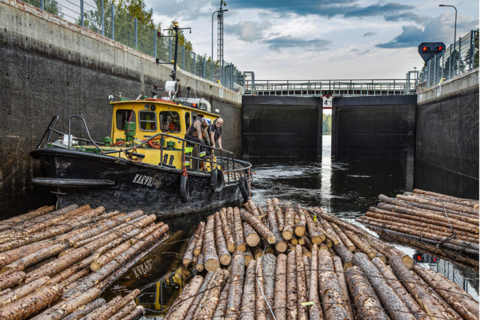 Jopa kilometrin pituinen lautta viedään kanavien  läpi 80 nipun erissä.