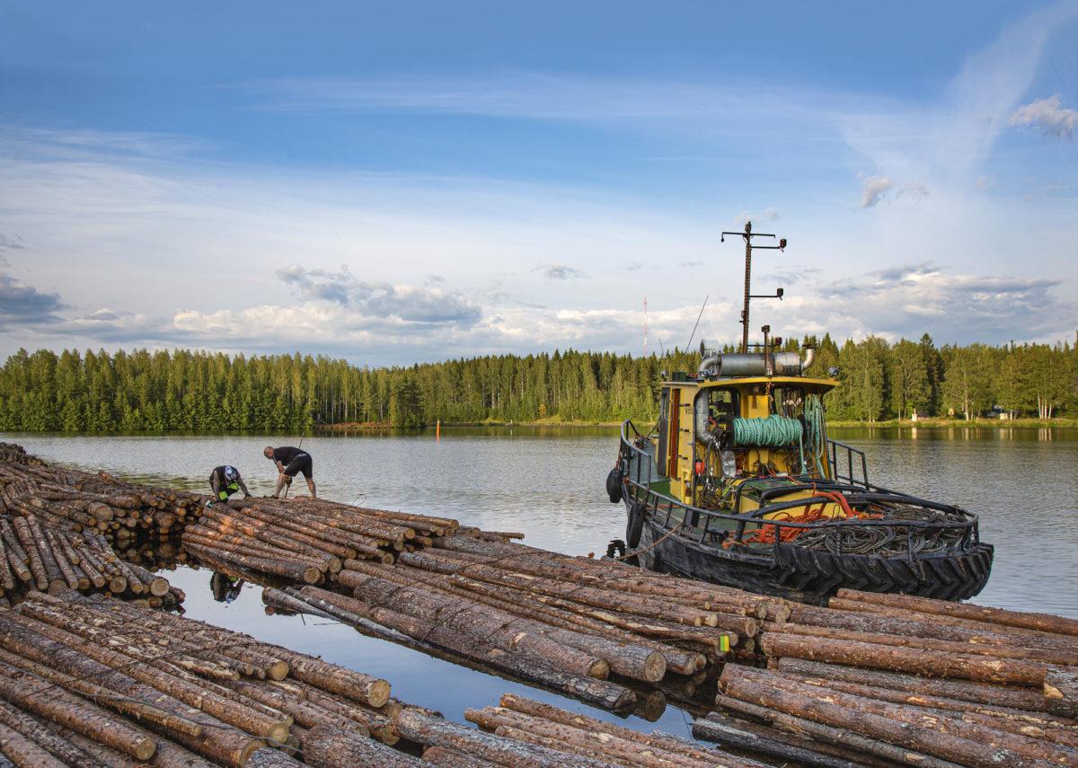 Yhdessä lautassa voi olla  350–400 rekkakuormallista puuta.
